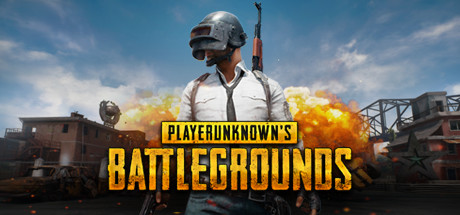 Купить PLAYERUNKNOWNS BATTLEGROUNDS на SteamNinja.ru