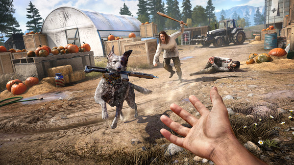 Купить аккаунт Far Cry New Dawn + Far Cry 5 Ultimate Xbox One + Series на SteamNinja.ru